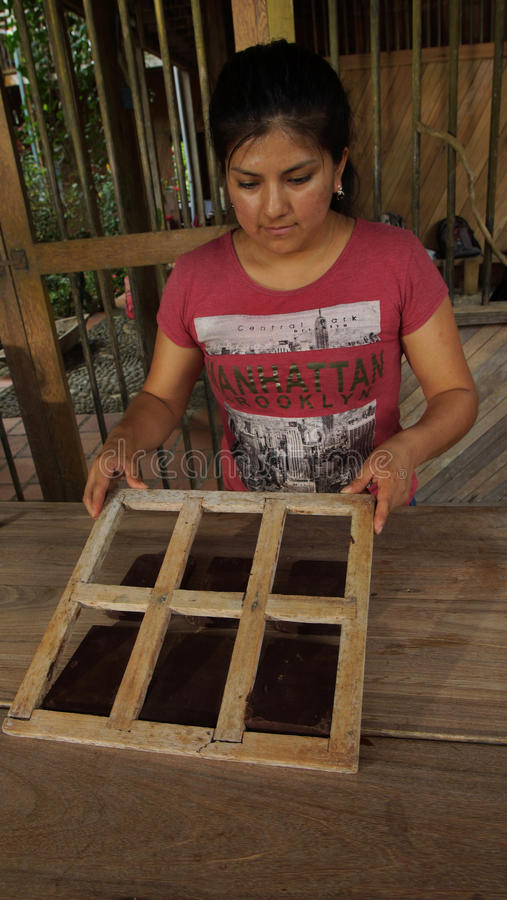 Young latin woman pulling out the chocolate blocks from the wooden molds stock images