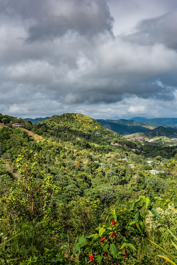 Puerto Rican landscape with houses among the trees. And cascading mountains in the background stock photography