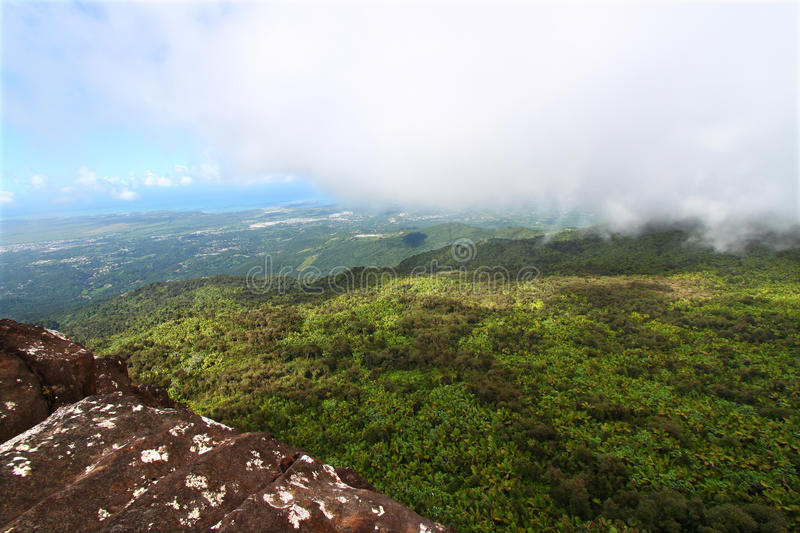 Download Puerto Rican Rainforest stock image. Image of tourism - 19815867