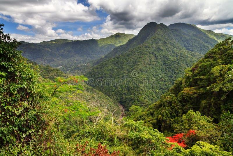 Puerto Rico Forest Hills fotografía de archivo libre de regalías
