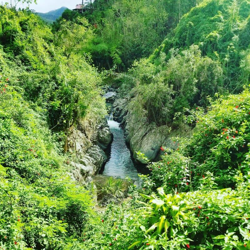Puerto Rico Ponce River lizenzfreies stockfoto