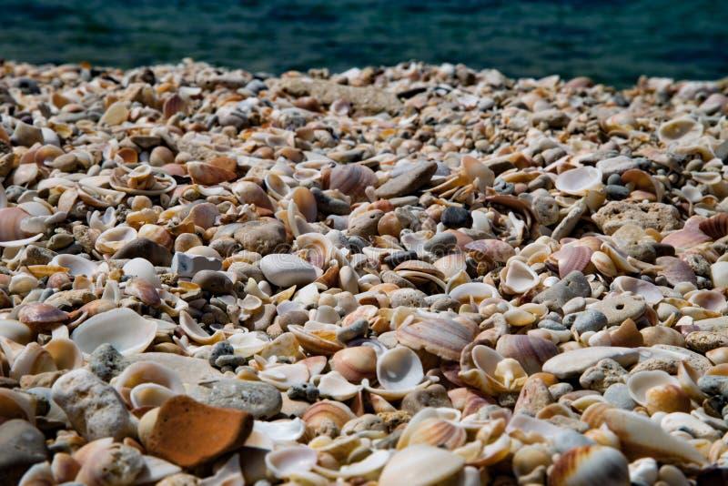 Puerto viejo Israel de Cesaria fotografía de archivo libre de regalías