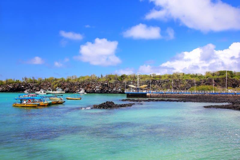 Puertoayora haven op Santa Cruz Island, het Nationale Pari van de Galapagos stock foto's
