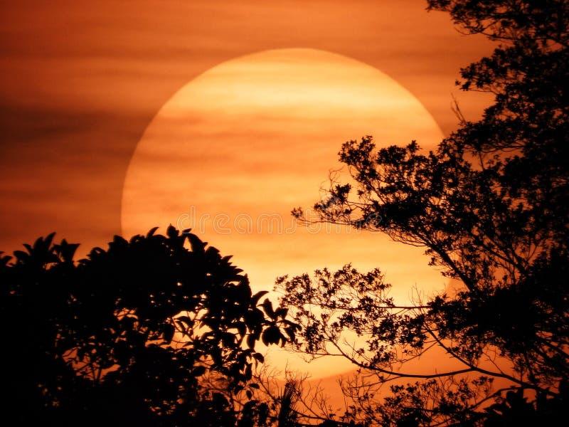 Puesta de sol con gran sol imágenes de archivo libres de regalías