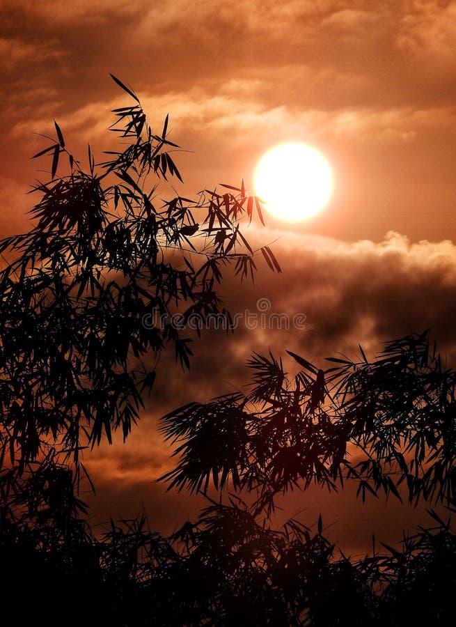 Puesta de sol con un gran sol foto de archivo libre de regalías