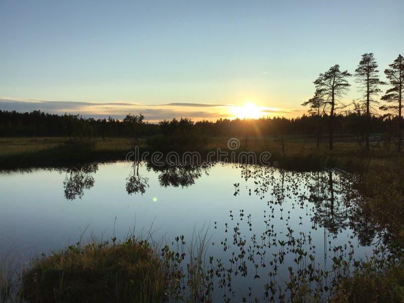 Puesta de sol en el lago forestal salvaje imagenes de archivo