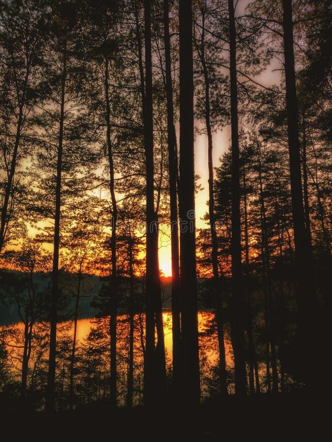 Download Puesta del sol foto de archivo. Imagen de armonía, aroma - 100531016