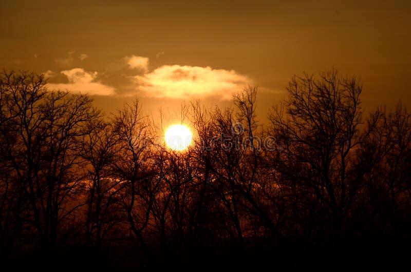 Download Puesta del sol foto de archivo. Imagen de nubes, belleza - 64201392