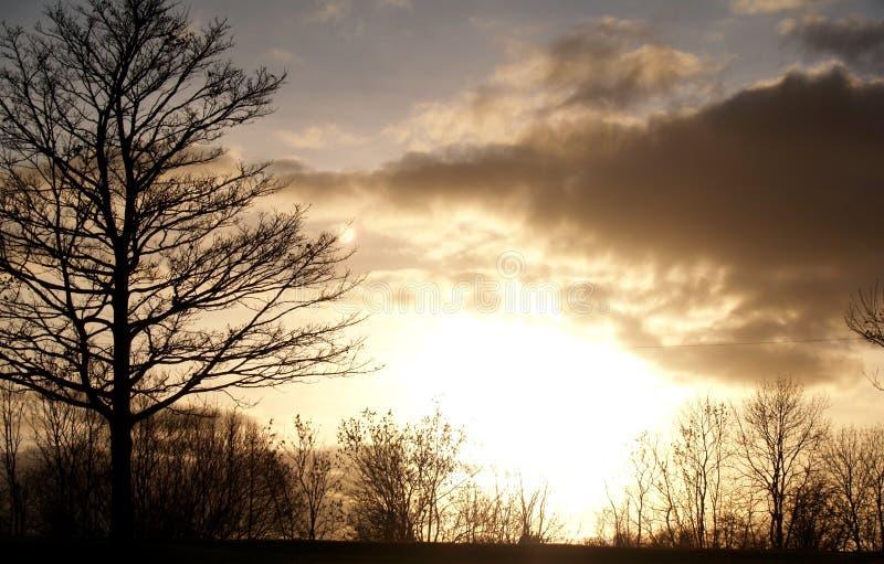 Download Puesta del sol foto de archivo. Imagen de humedad, azul - 7283502