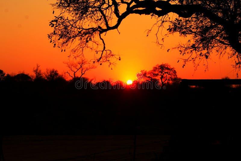Puesta del sol africana fotos de archivo