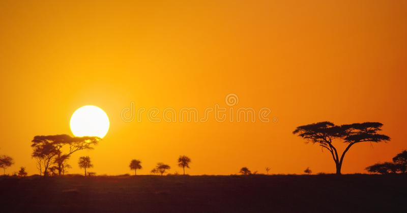 Puesta del sol africana panorámica hermosa en los llanos de la sabana del parque de Serengeti, Tanzania, África fotografía de archivo
