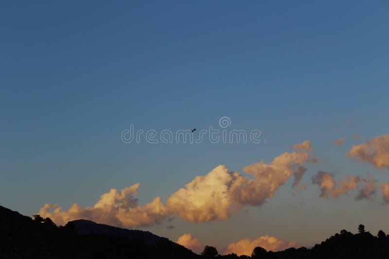 Puesta del sol agradable con la estela de varios aviones foto de archivo