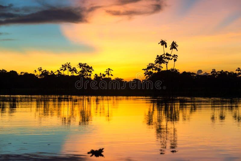 Puesta del sol amazónica colorida fotos de archivo