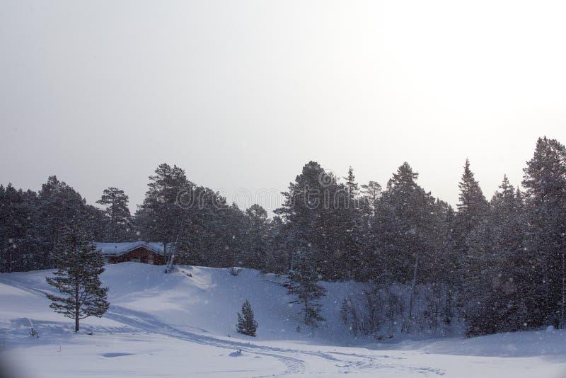 Puesta del sol anaranjada del invierno en Valdai fotos de archivo