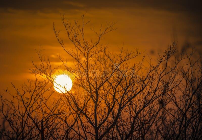 Puesta del sol ardiente en Suráfrica fotografía de archivo libre de regalías
