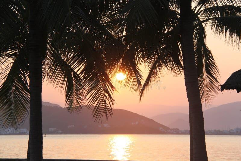 Puesta del sol asombrosa sobre el mar rodeado por las palmeras imagen de archivo libre de regalías