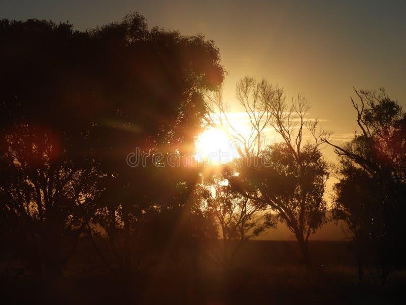 Puesta del sol australiana foto de archivo