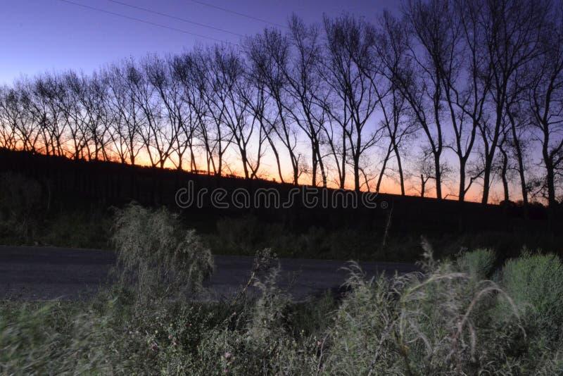 Puesta del sol azul imagen de archivo
