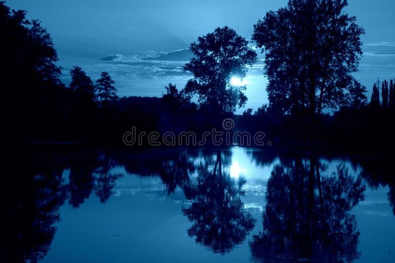 Puesta del sol azul del humor sobre el pantano con la reflexión del agua foto de archivo libre de regalías