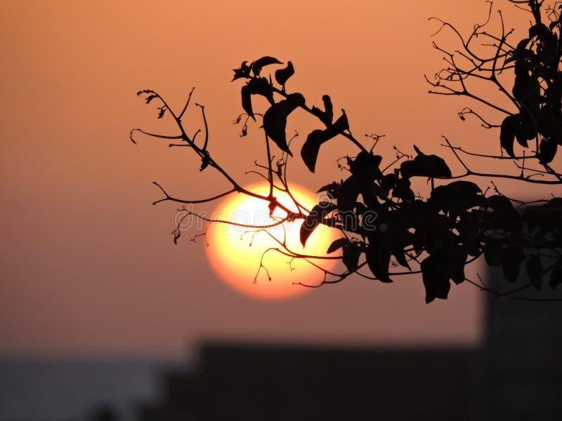 Puesta del sol borrosa fotos de archivo libres de regalías