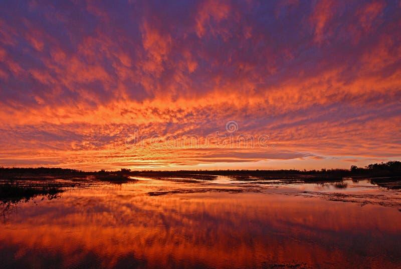 Puesta del sol brillante sobre pantano del humedal foto de archivo libre de regalías