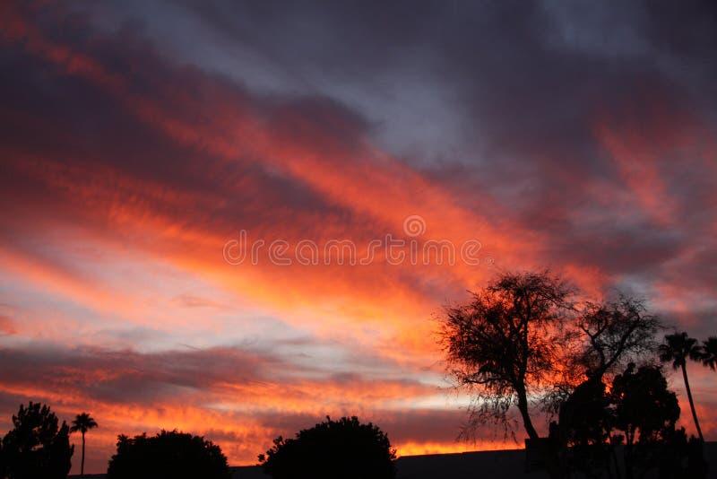 Puesta del sol caliente del desierto fotografía de archivo