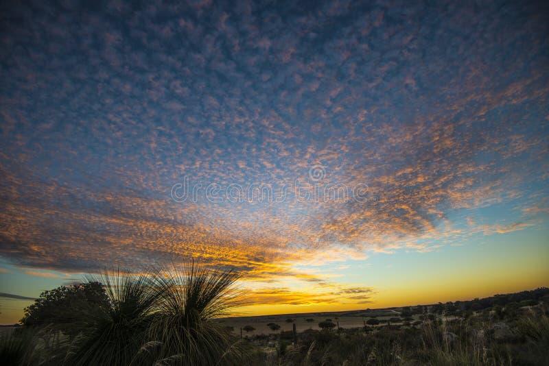 Puesta del sol cerca del desierto de los pináculos en Australia occidental fotos de archivo