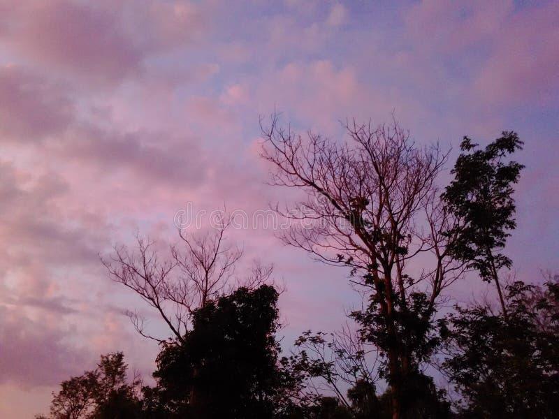 Puesta del sol colorida fotos de archivo