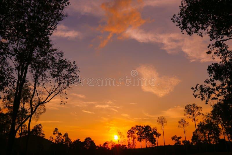 Puesta del sol colorida del cielo en el bosque foto de archivo libre de regalías