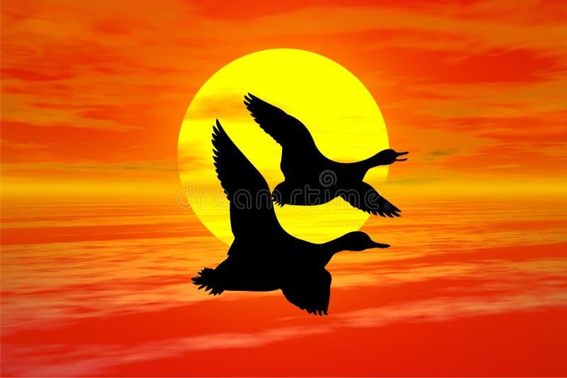 Puesta del sol con el ganso stock de ilustración