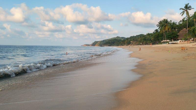 Puesta del sol con las palmeras en la playa de Sayulita imagenes de archivo