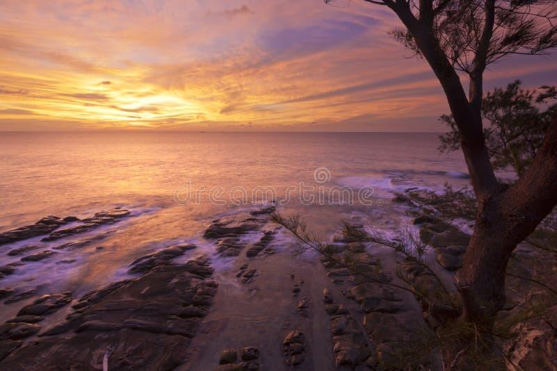 Puesta del sol costera enmarcada por un árbol en Borneo fotos de archivo libres de regalías