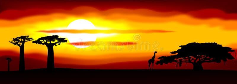 Puesta del sol de África stock de ilustración