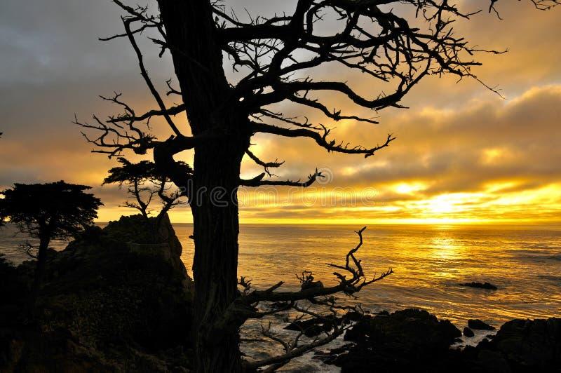 Puesta del sol de Big Sur sobre el océano imágenes de archivo libres de regalías