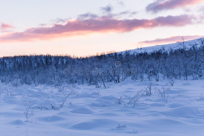 Puesta del sol de la escena de Laponia del país de las maravillas del invierno imagen de archivo