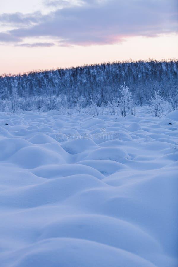 Puesta del sol de la escena de Laponia del país de las maravillas del invierno foto de archivo
