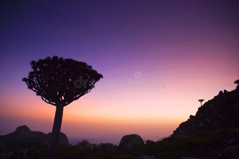 Puesta del sol de la isla de Socotra foto de archivo libre de regalías
