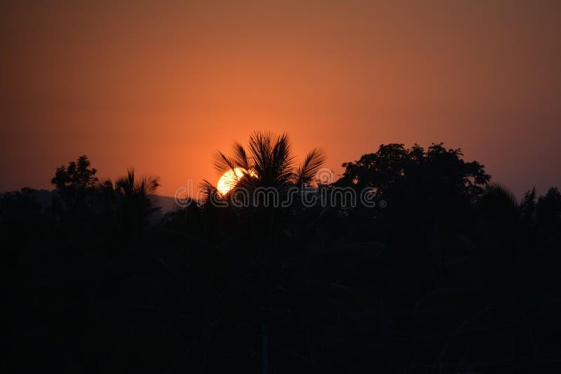 Puesta del sol de la naturaleza fotos de archivo