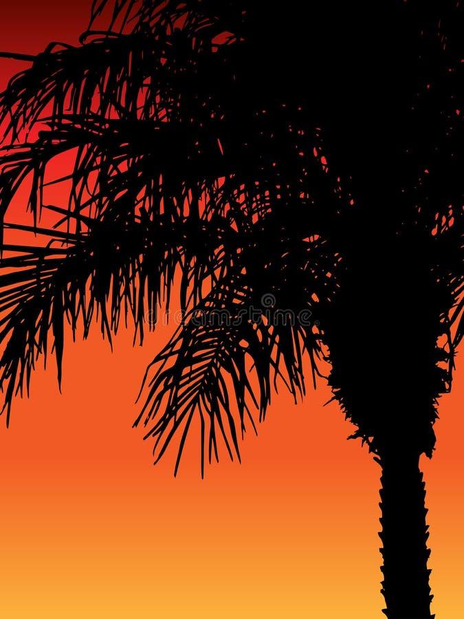 Puesta del sol de la palmera libre illustration