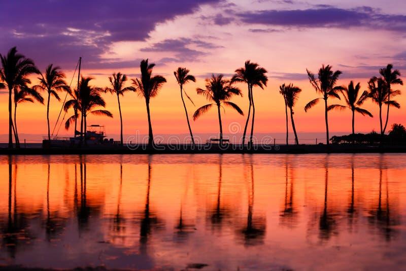 Puesta del sol de la playa de Hawaii - paisaje tropical del paraíso fotos de archivo libres de regalías
