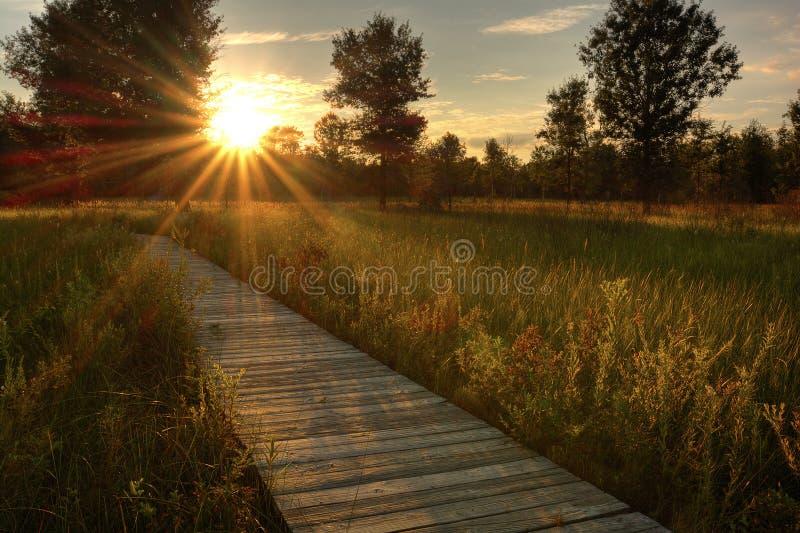 Puesta del sol de la pradera imagen de archivo libre de regalías