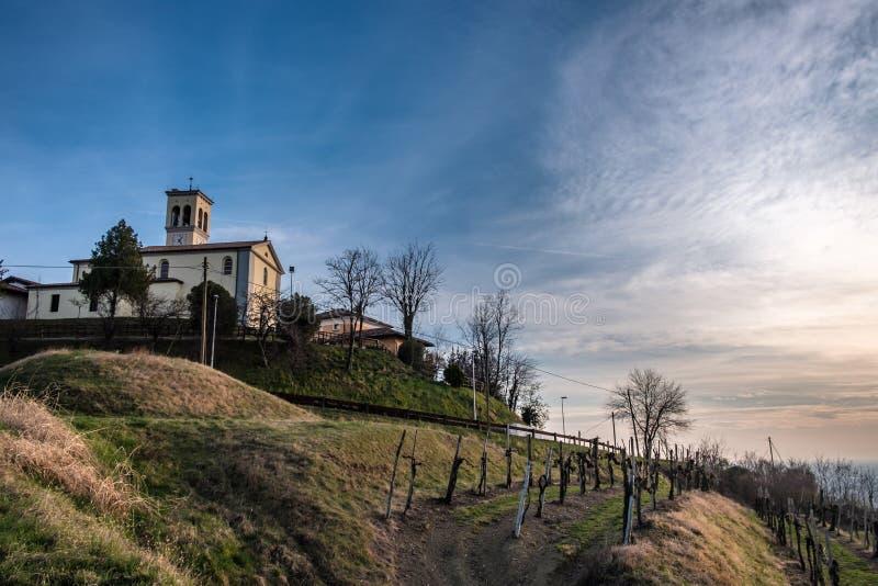 Puesta del sol de la primavera en los vi?edos de Collio Friulano fotos de archivo libres de regalías