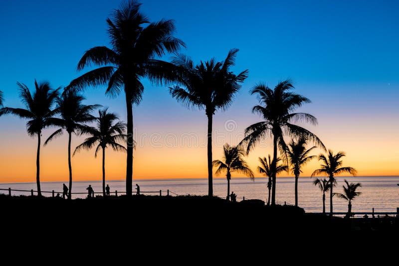 Puesta del sol de las palmeras en la playa del cable, Broome, Australia occidental imagen de archivo