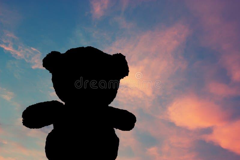 Puesta del sol de observación del oso de peluche imagen de archivo