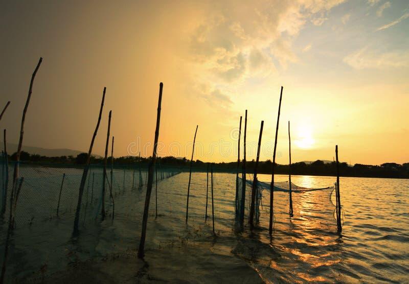 Puesta del sol de oro sobre el lago Chilka, Orissa imagen de archivo