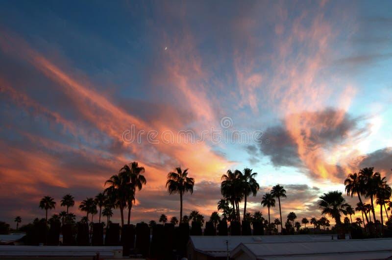 Puesta del sol de Tucson fotos de archivo libres de regalías
