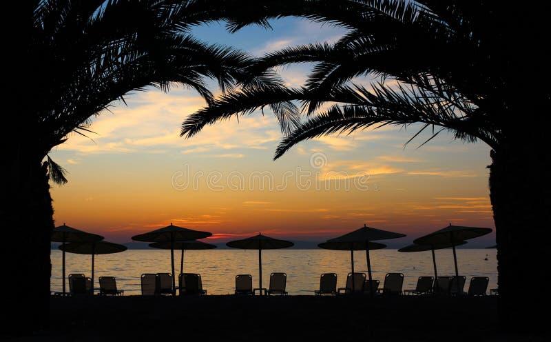 Puesta del sol debajo de las palmeras imagen de archivo