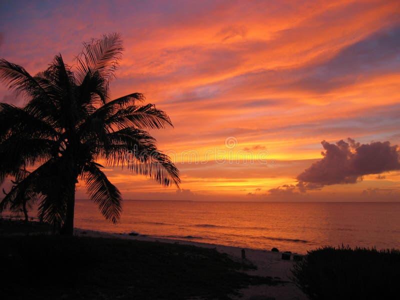 Download Puesta del sol del Caribe imagen de archivo. Imagen de caymans - 1290433