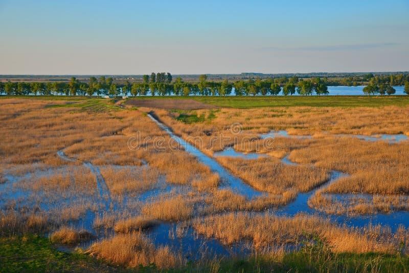 Puesta del sol del delta de Danubio imagen de archivo