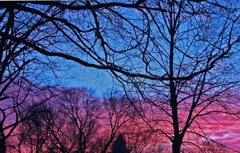 Puesta del sol del invierno foto de archivo